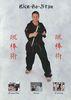 Budoten Bo Jitsu Lehr-DVD