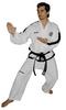 Top Ten Taekwondo Anzug PQ Mesh Master