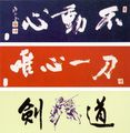 Sportimex Kendo Tenchui