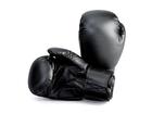 Budoten Boxhandschuhe Carbon