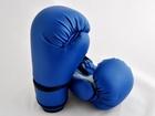 Budoten Boxhandschuhe CARBON MESH I