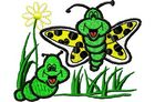Budoten Stickmotiv Schmetterling mit Freund / Butterfly & Friend DAC-CH0504