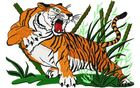 Budoten Stickmotiv Tiger Szene / Tiger Scene DAC-WL0268