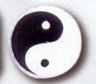 Budoland Stoffabzeichen Yin & Yang