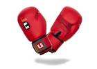 Boxhandschuhe Training rot 14oz