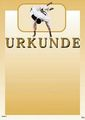 KWON Urkunde Judo orange