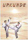 DanRho Urkunde Karate beige