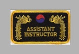 DanRho  Stickabzeichen Assistant Instructor