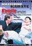 Mastering Karate Kumite