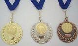 Budoten  Medaille 2504