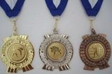 Budoten  Medaille 2506