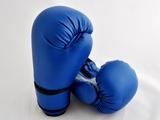 Budoten  Boxing gloves CARBON MESH I