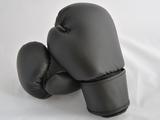 Boxhandschuhe CARBON MESH II - schwarz-grau