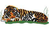 Stickmotiv Bengalischer Tiger / Bengal Tiger DAC-WL1102