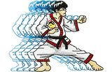 Budoten  Stickmotiv Martial Arts / Jeet Kune Do - EMB-CJ830