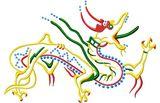 Budoten  Stickmotiv Chinesischer Drachen / Chinese Dragon - EMB-15163