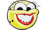 Budoten  Stickmotiv Lachendes Gesicht EMB-WM527F