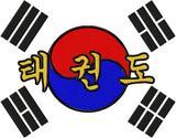 Rückenbestickung large Taekwondo / Tae Kwon Do DAC-SP3766