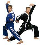 Hayashi  Karateanzug HAYASHI Osaka Freestyle