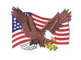 Ju-Sports  Patch USA Adler