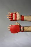 Ju-Sports  Ju-Jutsu Handschutz rot