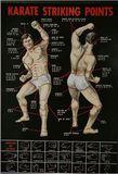 Poster Karate - Striking Points