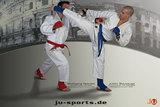 Ju-Sports  Poster Ju-Jutsu Colloseum