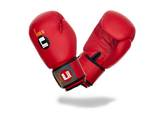 Ju-Sports  Boxhandschuhe Training rot