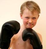 DAX  Boxhandschuhe MULTI KL