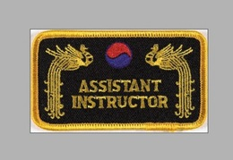 Stickabzeichen Assistant Instructor