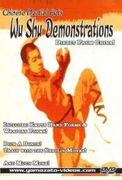 Wu Shu Demonstrations