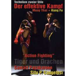 Action Fighting - Tiger und Drachen