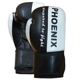 PX Boxhandschuh Prepared to Fight PU s/w