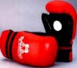 Taekwondo Punch Mitt rot-schwarz