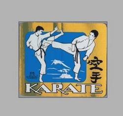 PVC-Aufkleber Karate-Kampf, metallic