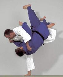Judogi Nippon No.1 blau