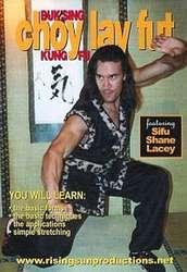 Buk Sing Choy Lay Fut Kung Fu