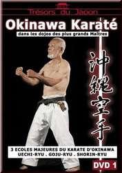 Okinawa Karate 1