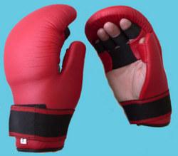 Pointfighting Handschutz, rot