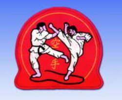 Stickabzeichen  Karate