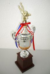 Pokal 526