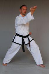 Meister Taekwondo-Anzug Kyongi