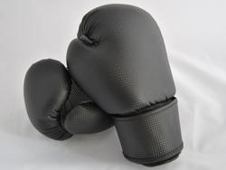 Boxhandschuhe CARBON MESH II
