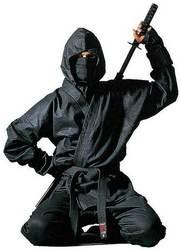 Ninja-Anzug Kendo