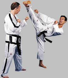 Hayashi Taekwon-Do Anzug ITF Instructor