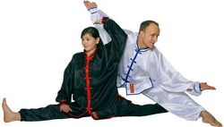 Tai Chi - Whu Shu Uniform