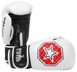Boxhandschuhe Top Ten MMA