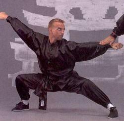 Kung Fu - Wu Shu Anzug schwarz