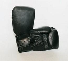 Budoten Boxhandschuh Kunstleder